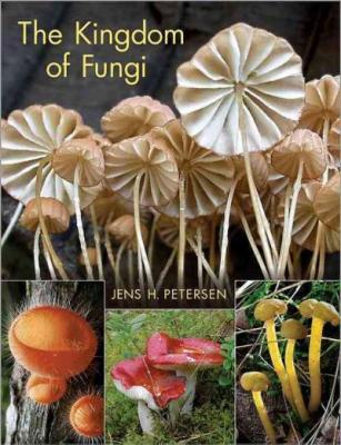 The Kingdom of Fungi Cover Image