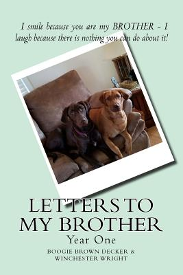 Letters to My Brother: Year One Cover Image