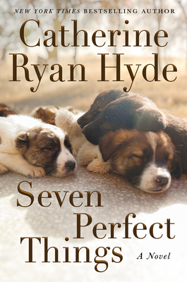 Seven Perfect Things Cover Image
