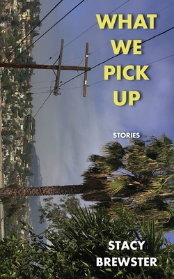Cover for What We Pick Up