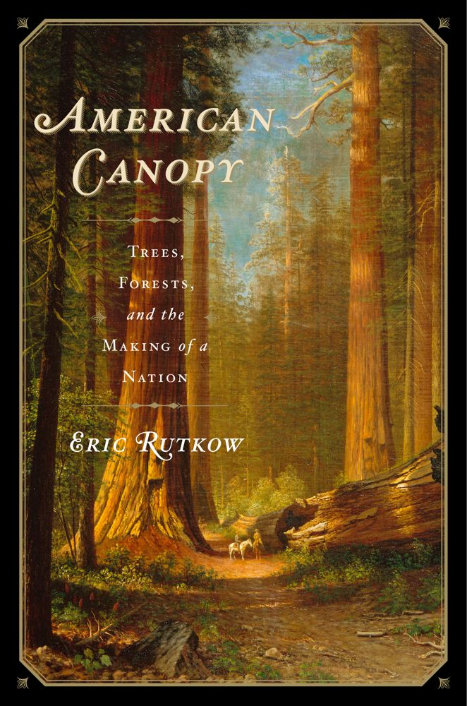 American Canopy: Trees, Forests, and the Making of a Nation Cover Image