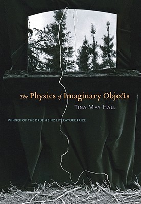 Cover for The Physics of Imaginary Objects (Drue Heinz Literature Prize)