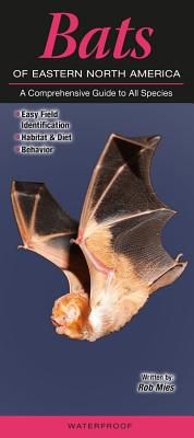 Bats of Eastern North America: A Comprehensive Guide to All Species Cover Image