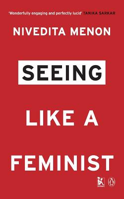Seeing Like a Feminist Cover Image