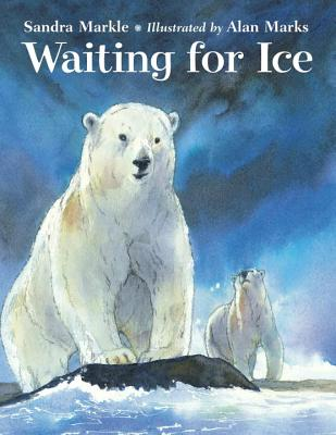 Waiting for Ice Cover