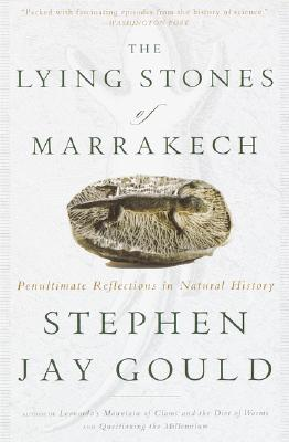 Cover for The Lying Stones of Marrakech