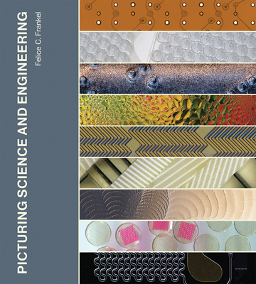 Picturing Science and Engineering Cover Image