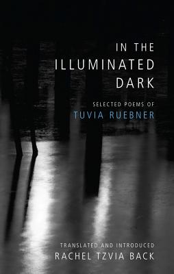 Cover for In the Illuminated Dark