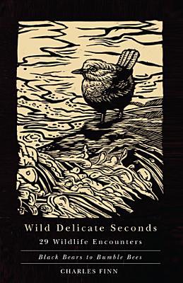 Wild Delicate Seconds Cover