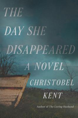 The Day She Disappeared Cover Image