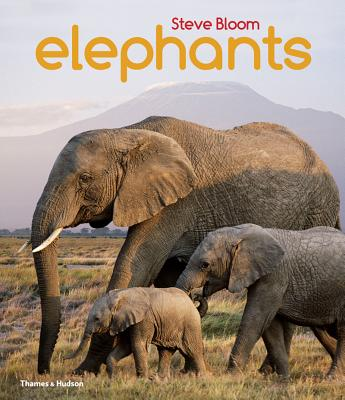 Elephants: A Book for Children Cover Image