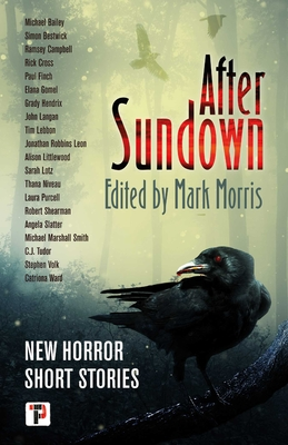 After Sundown (Fiction Without Frontiers) Cover Image
