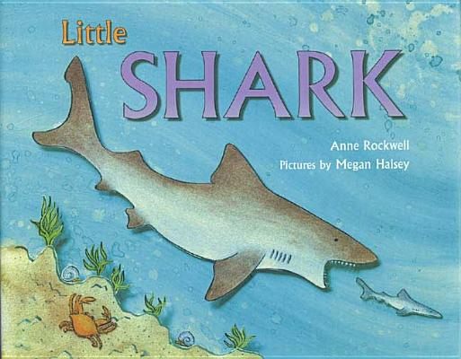 Little Shark Cover