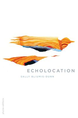 Cover for Echolocation