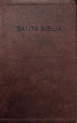 Biblia Para Regalo y Premio-NVI Cover Image