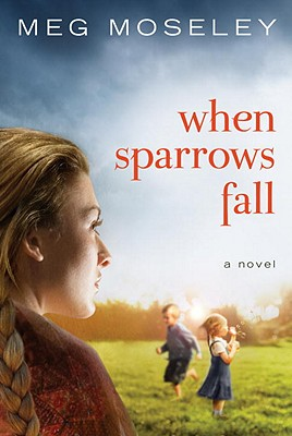 When Sparrows Fall Cover