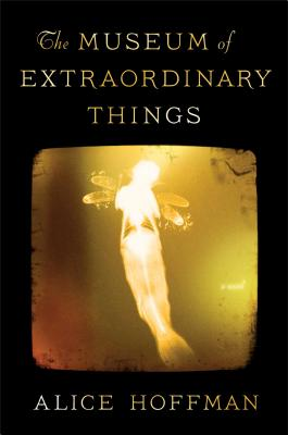 The Museum of Extraordinary Things: A Novel Cover Image