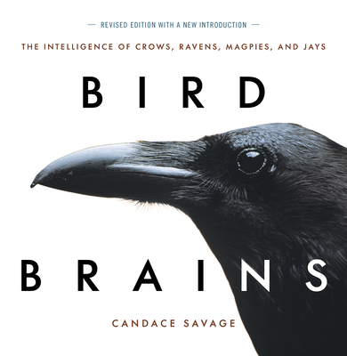 Bird Brains, New Edition: The Intelligence of Crows, Ravens, Magpies, and Jays Cover Image