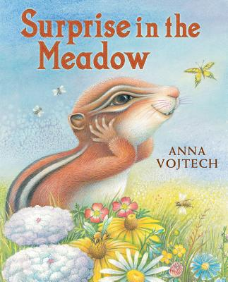 Cover for Surprise in the Meadow