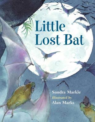Little Lost Bat Cover