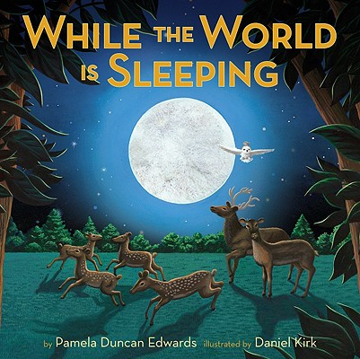 Cover for While the World Is Sleeping