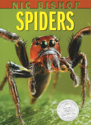 Nic Bishop Spiders Cover