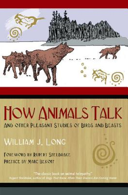 Cover for How Animals Talk