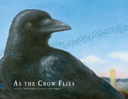 how to find a crow roost