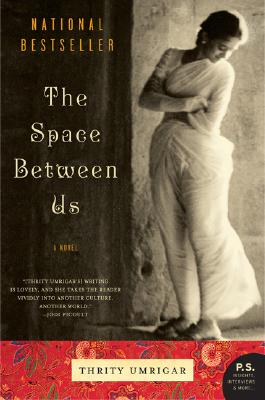 The Space Between Us: A Novel Cover Image