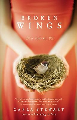 Broken Wings: A Novel Cover Image
