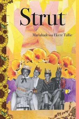 Strut Cover Image