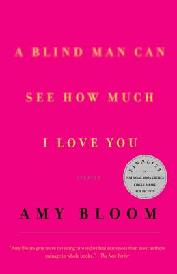 A Blind Man Can See How Much I Love You: Stories (Vintage Contemporaries) Cover Image