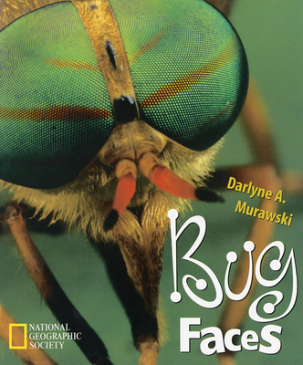 Bug Faces Cover