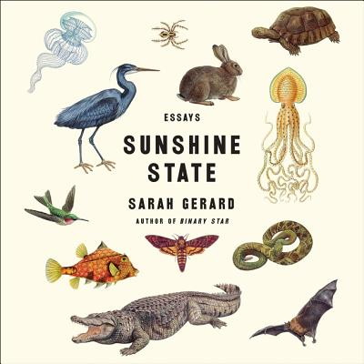 Sunshine State Lib/E: Essays Cover Image