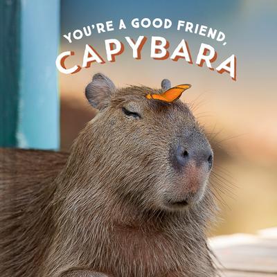 You're a Good Friend, Capybara Cover Image