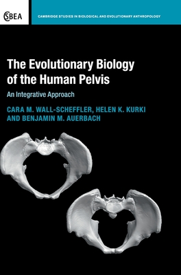 The Evolutionary Biology of the Human Pelvis (Cambridge Studies in Biological and Evolutionary Anthropolog #85) Cover Image