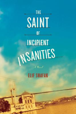 The Saint of Incipient Insanities Cover