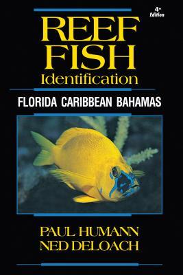 Reef Fish Identification: Florida Caribbean Bahamas (Reef Set #1) Cover Image