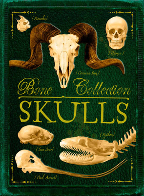 Bone Collection: Skulls Cover Image