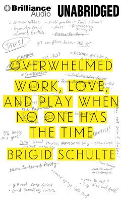 Overwhelmed: Work, Love, and Play When No One Has the Time Cover Image