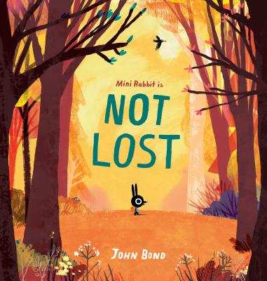 Mini Rabbit Is Not Lost Cover Image