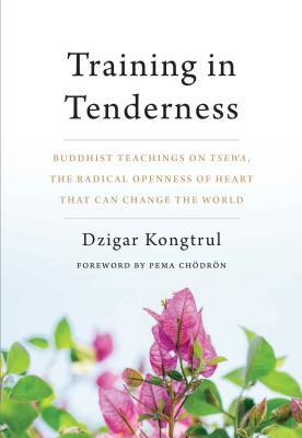 Training in Tenderness: Buddhist Teachings on Tsewa, the Radical Openness of Heart That Can Change the  World Cover Image