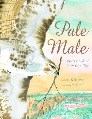 Pale Male Cover