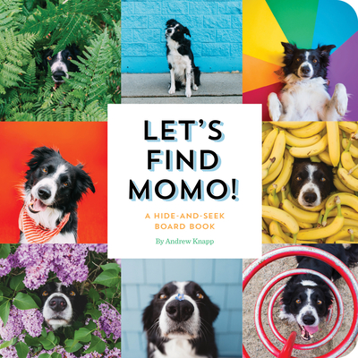 Let's Find Momo!: A Hide-and-Seek Board Book Cover Image