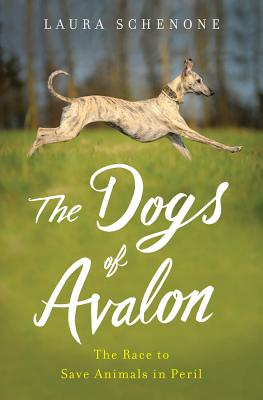 The Dogs of Avalon: The Race to Save Animals in Peril image_path