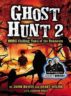 Ghost Hunt 2 Cover