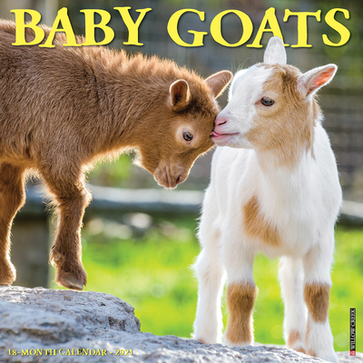 Baby Goats 2021 Wall Calendar Cover Image