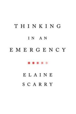 Thinking in an Emergency (Norton Global Ethics Series) Cover Image