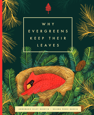 Cover for Why Evergreens Keep Their Leaves
