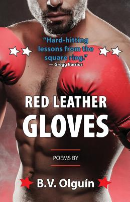 Red Leather Gloves Cover